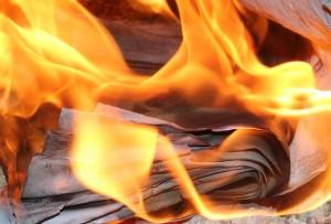 Arjowiggins Security : pour sauver leur emploi, les salariés brûlent des cartes grises
